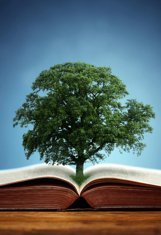 The Book of Bereishit | Part 7: What we learn from Jacob's dream and vow